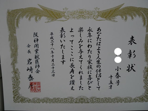 201610234